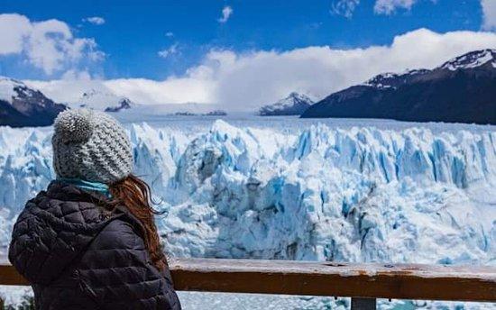 Patagonia Nice Transfers