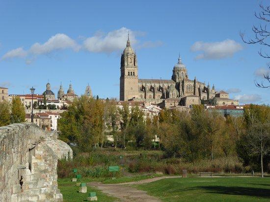 Douro Splendour: Salamanca 'new' cathedral from the Roman Bridge.