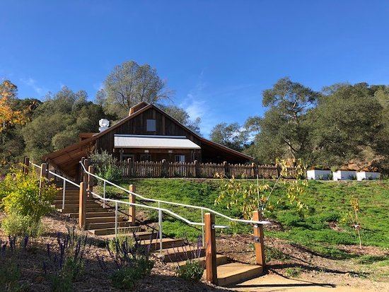The Capo Creek tasting room and wine cave opened to the public in late 2018.