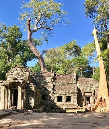 Sunrise tour (Cambodia travel Angkor) Angkor Wat. Taprom. Bayon. Banteay Srei.