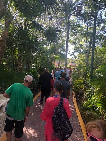 Xel-Há Park All-Inclusive Admission Ticket: The walk from the parking lot to the front gate.