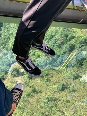 Ngong Ping 360 Cable Car Ticket on Lantau Island: View from Crystal Carriage :)