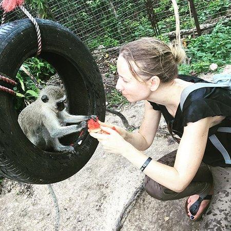 Zanzibar Kilosas Conservation
