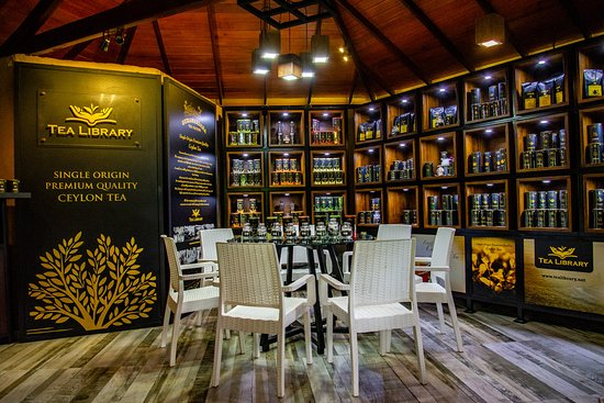 Our tea tasting place