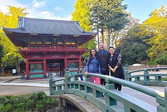 Experience Old and Nostalgic Tokyo: Yanaka Walking Tour