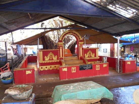 Mangalore Dry Fish Market