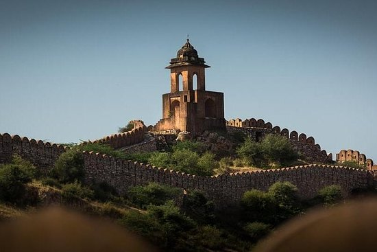 Forts and palace tour of Jaipur