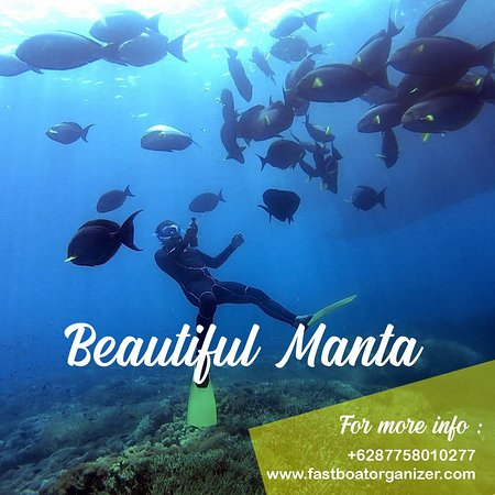 Snorkeling at Manta Point on Nusa Penida, an island just off the coast of mainland Bali is one of the most amazing experiences you can have while traveling in Indonesia.