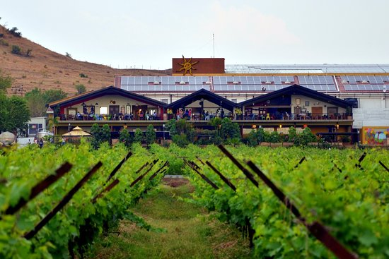 ‪Sula Vineyards‬