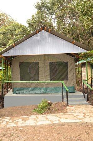 馬賽馬拉自然保護區照片