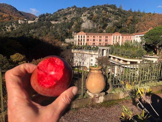 Le Grand Hotel Molitg Les Bains Francia Opiniones