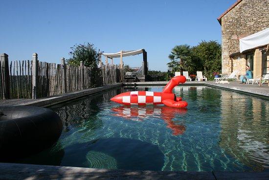 piscine naturelle 6x15