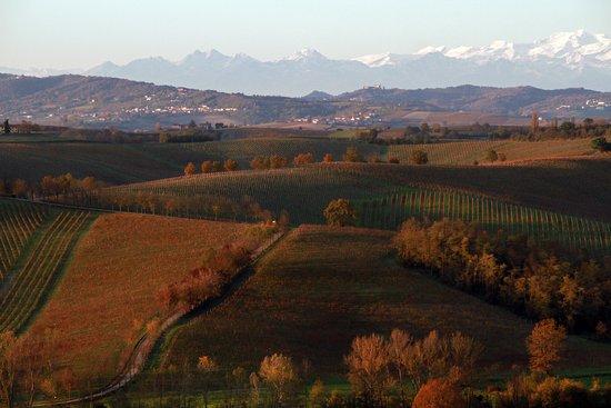 Portacomaro, Italy: La vista autunnale dal nostro agriturismo. Riuscite a vedere in fondo la tenuta dei Fratelli Durando