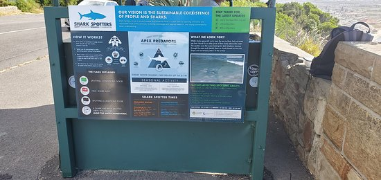 Table Mountain National Park  Shark Spotters - Safety Education Research Conservation