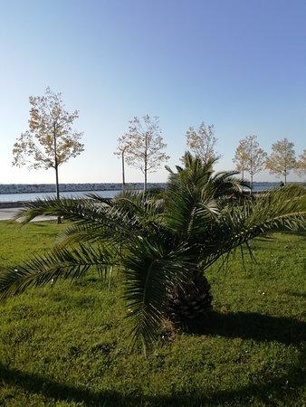 Orhangazi Şehir Parkı