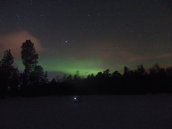 Small-Group Aurora Hunt Northern Lights Tour from Tromso: Our personal camera