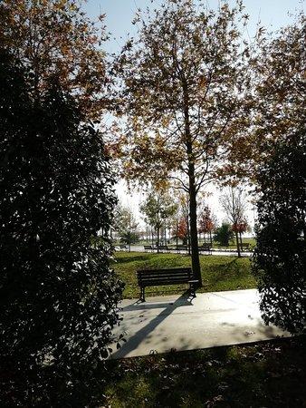Sahil Park