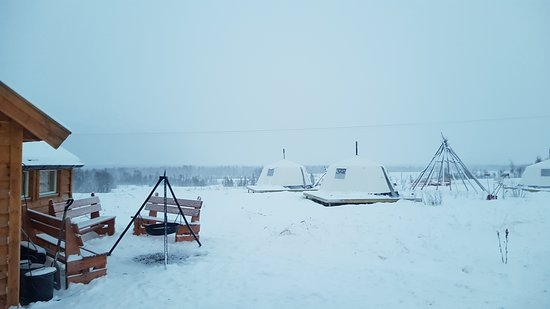 Overnight Stay in Lavvu, Northern Lights, and Reindeer Sledding in Tromso: Campamento con lavvus turísticos modernos