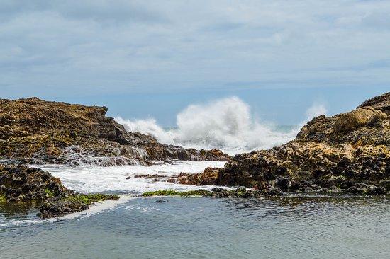Full-Day Wild West Coast Photo and Discovery Tour including Lunch from Auckland: Pia Beach