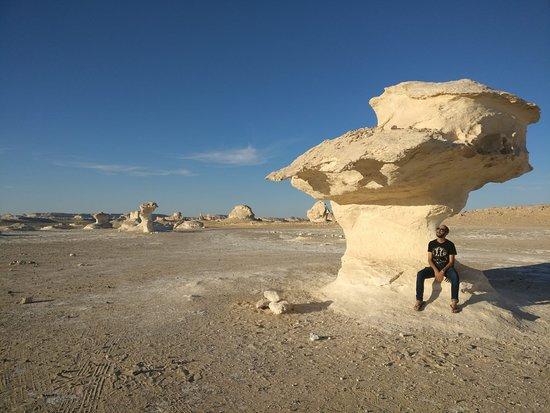 Safari dans le désert noir et blanc, camping sous la lune : White desert