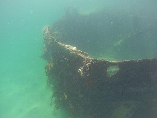 snorkeling sur l'épave
