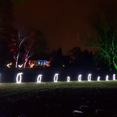 Winterlichter 2020 im Palmengarten, Frankfurt