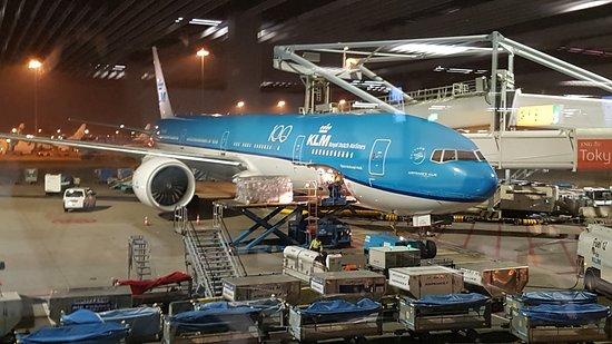 الخطوط الجوية الملكية الهولندية كيه إل إم: Het KLM vliegtuig Boeing 777-200 vlucht KL 0681 die 23 oktober 2019 naar Singapore vloog en daarna naar Bali. De foto bij de Schiphol gate genomen voor het instappen .