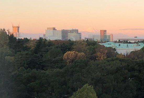 Mount Fuji view