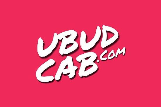 Ubud Cab & Tour Service