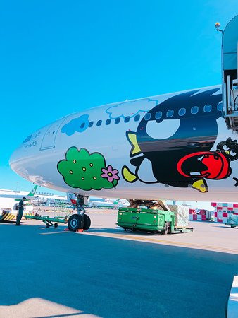 EVA Air: 這次搭到的是酷企鵝!!