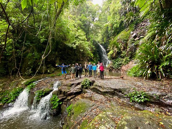Rainforest Tours Australia