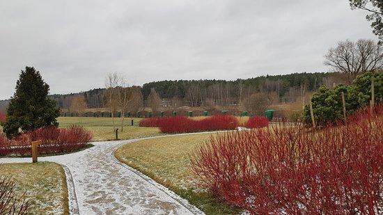 Anosino, روسيا: Anosino Village, Istra District, Moscow Region. Sberbank Corporate University (December 2019)
