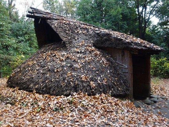 縄文時代の復元住宅
