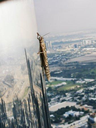 "At the Top, Burj Khalifa - Levels 125+124 ""General Admission"": I tak vysoko"