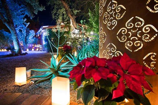 Luminaria Nights at the Tucson Botanical Gardens