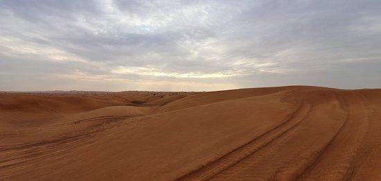 Safari desert with Rashid