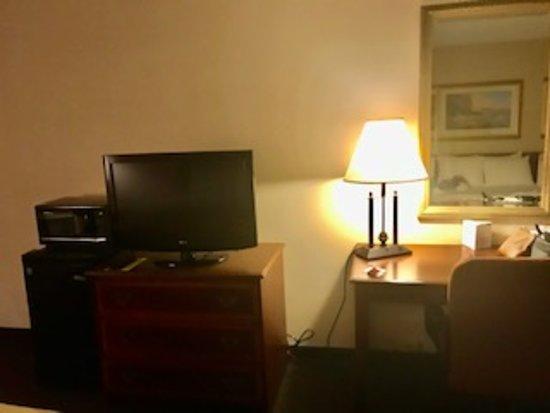 TV, fridge, microwave, desk