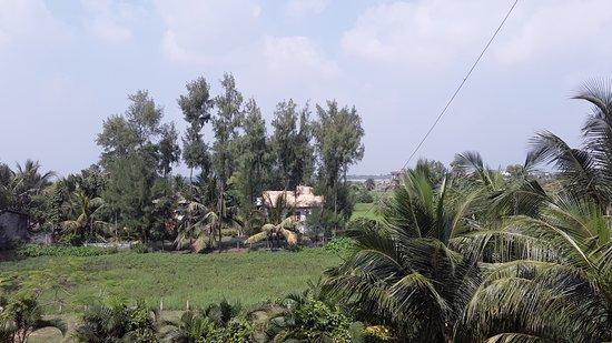 Mandarmani