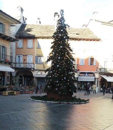 Albero di Natale in Piazza del Mercato