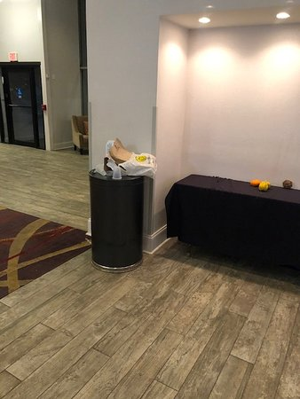 Picture of overflowing garbage in the lobby that was there for at least an hour.