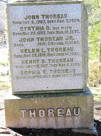 john thoreau