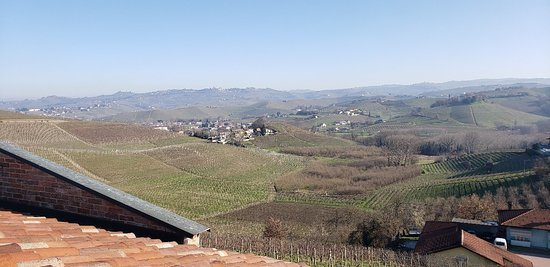 Foto de Barolo Wine Tour desde Milán