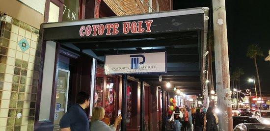 Coyote Ugly Saloon Tampa Historic Ybor Restaurant Reviews Photos Phone Number Tripadvisor