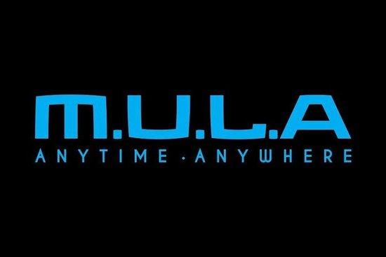 Mula Car International Sdn. Bhd.