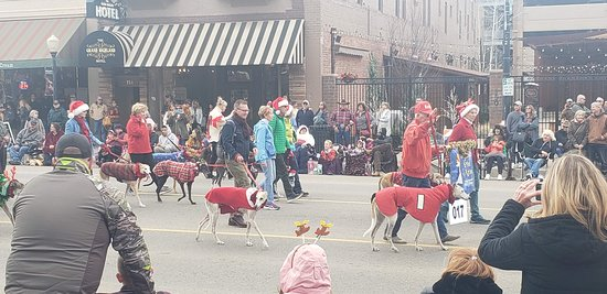 Across the street from the hotel during Christmas Parade.