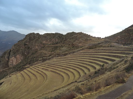 Heiliges Tal der Inkas Ganztages Tour ohne Eintrittsgebühr: Agriculture terasa