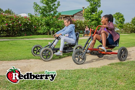 Pedal Go Karts at Redberry Farm