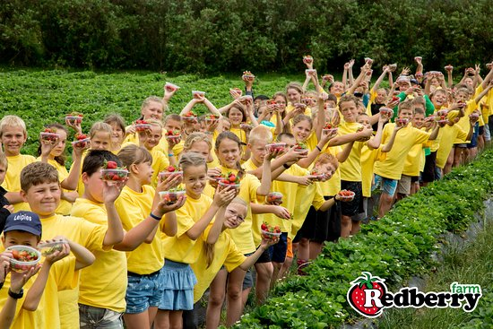 School group tours at Redberry Farm