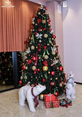 Our Christmas tree is ready