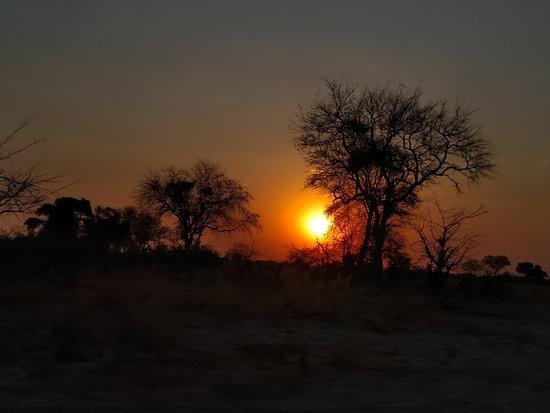 Safari vanuit Nambwa Lagoon Camp in het Bwabwata National Park